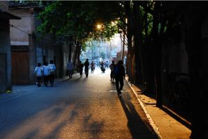 复园路(拍摄:池志海)