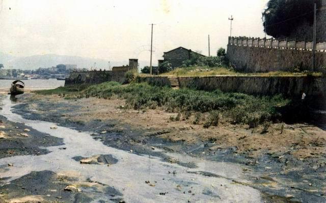 1991年的青洲船坞
