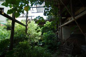 观澜书院内部现状(拍摄:ahaofz 2011年7月)