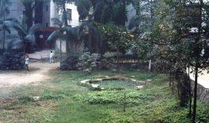喷泉遗址 火燄山 1994