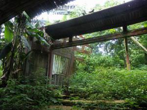 后殿现状 火燄山 2012.5