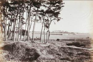 1880-1890的跑马场 来自布里斯托大学