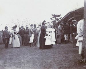 1895年马赛的观众 来自布里斯托大学