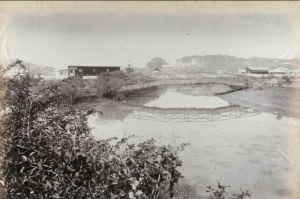 1880年的跑马场 布里斯托大学