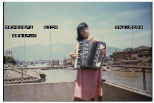 1980年代,由中洲岛水文站望鼓山(照片提供、建筑辨识:林司后)