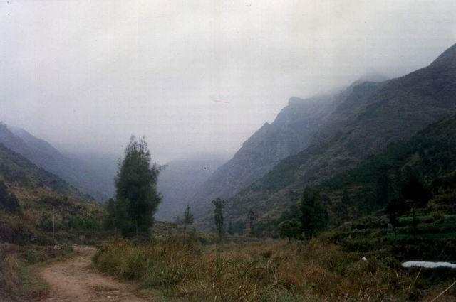 岭头山雾 火燄山 1996