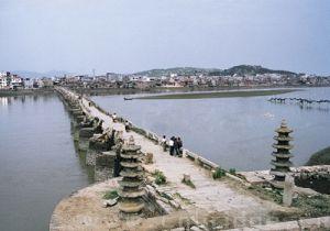 龙江桥鸟瞰 来自中国桥梁网