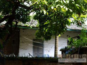 2012年拍摄的居安里31号主体建筑(来源:林轶南摄于2012年)